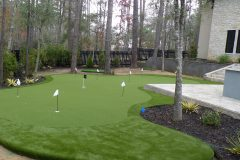 putting green H1