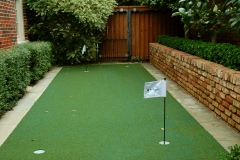 putting green D4