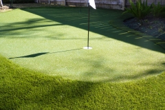 putting green H4